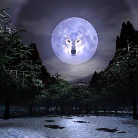 Скачать песню одинокая луна v7 club